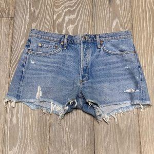 NWT Agolde Parker Vintage Cutoff Shorts